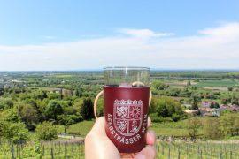 Weinwanderung-Bergstrasse-2