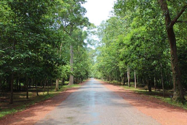 Angkor-Wat-Fahrrad22