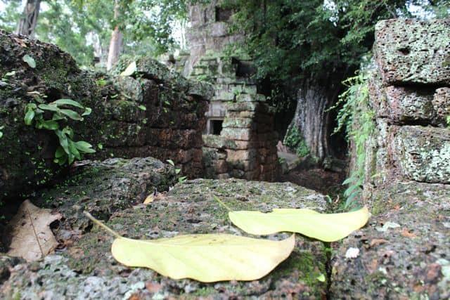 Angkor-Wat-Fahrrad28