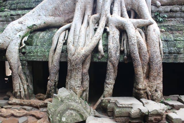 Angkor-Wat-Fahrrad29