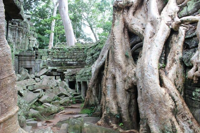 Angkor-Wat-Fahrrad31