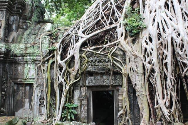 Angkor-Wat-Fahrrad32