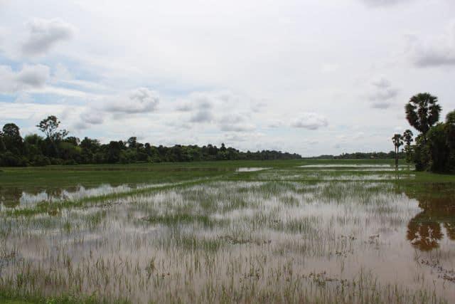 Kambodscha-ist05