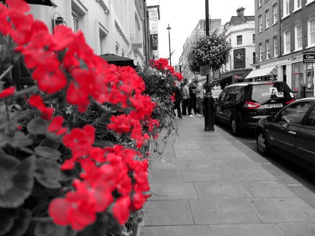 London-rot18