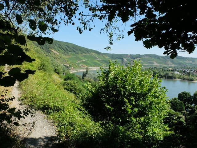 Mittelrhein-Klettersteig02
