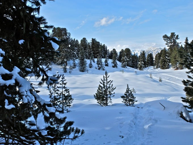 Schneeschuh-Faltegartenkoepfl05