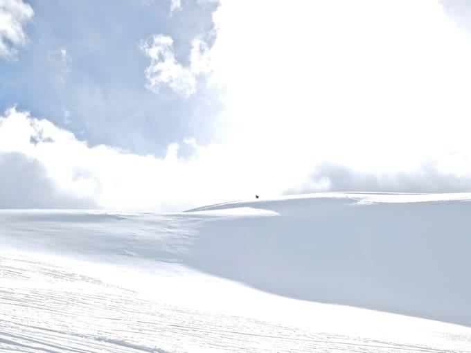 Schneeschuh-Faltegartenkoepfl12