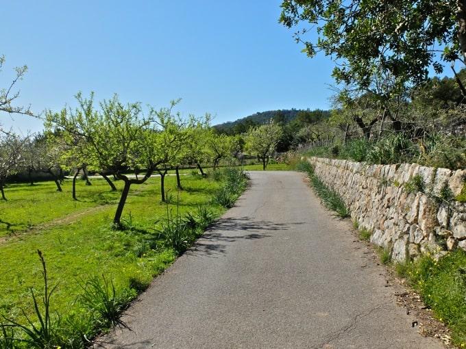 Radfahren-Mallorca-Teil1-15