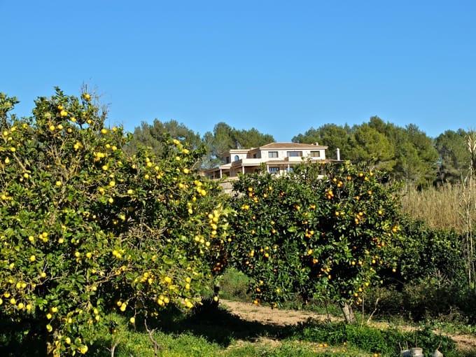 Radfahren-Mallorca-Teil1-23