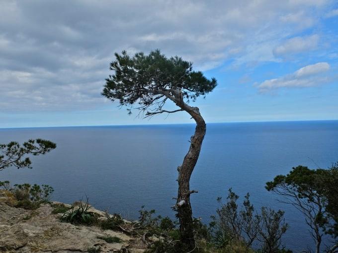 Radfahren-Mallorca-Teil2-14
