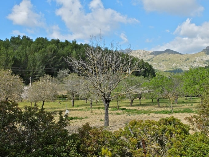 Radfahren-Mallorca-Teil2-28