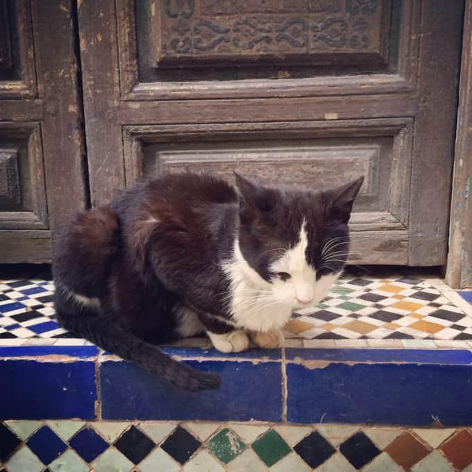 Marokko-Instagram09