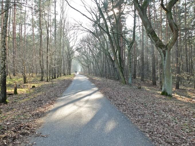 Radtour-Potsdam-Havelseen19