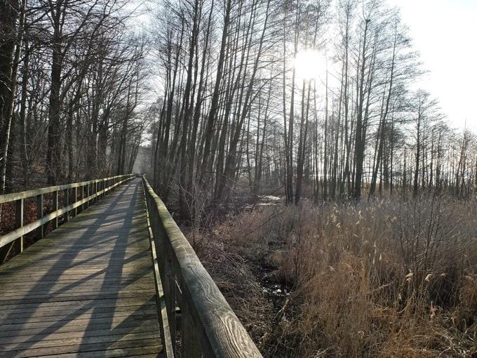 Radtour-Potsdam-Havelseen22