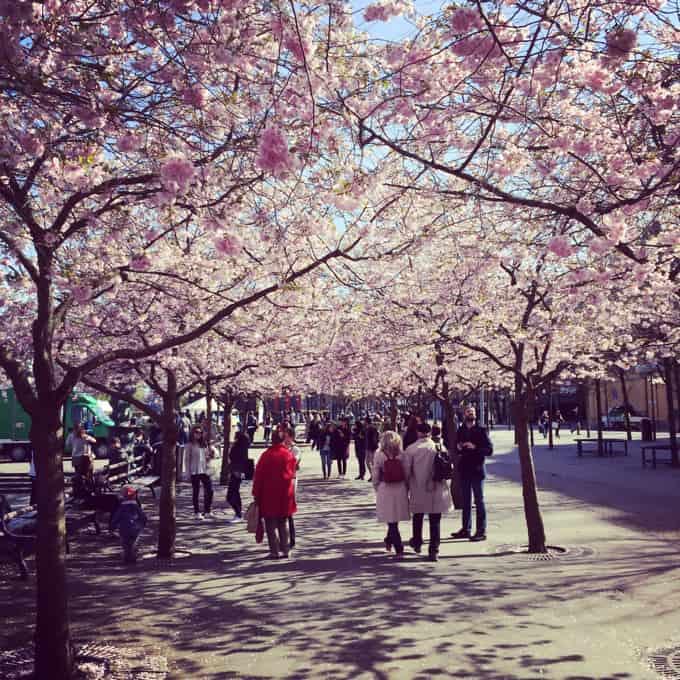 Stockholm-Helsinki-Tallinn-Instagram06
