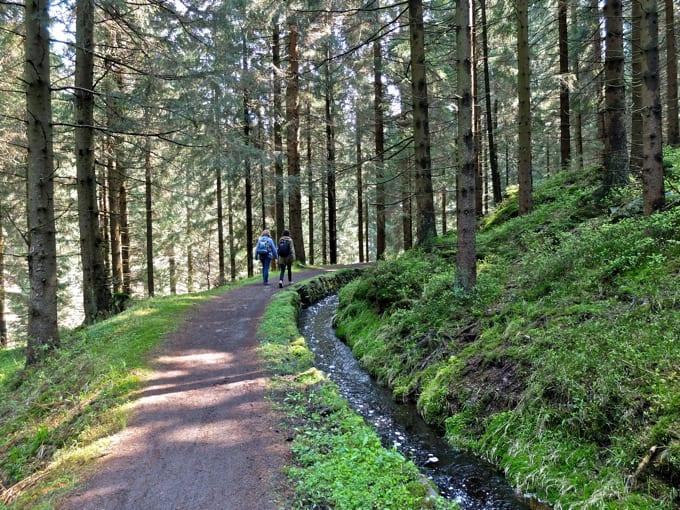 Wolfswarte-Wanderung-Altenau08