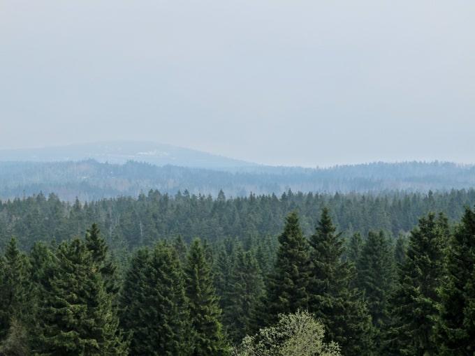 Wolfswarte-Wanderung-Altenau23