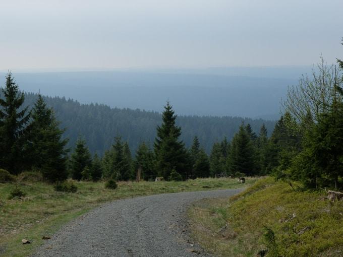 Wolfswarte-Wanderung-Altenau27