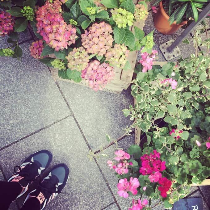 Strassburg-Instagram24
