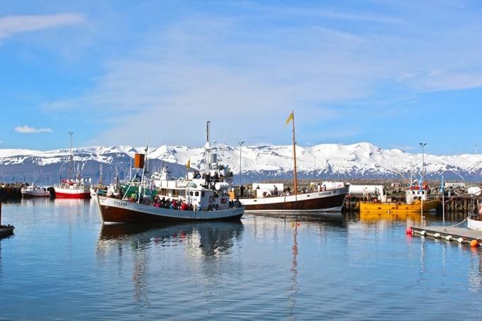 Husavik-Island14