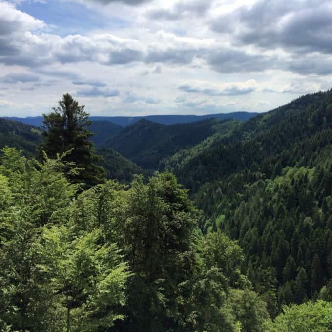 Oldtimer-Schwarzwald-Instagram13