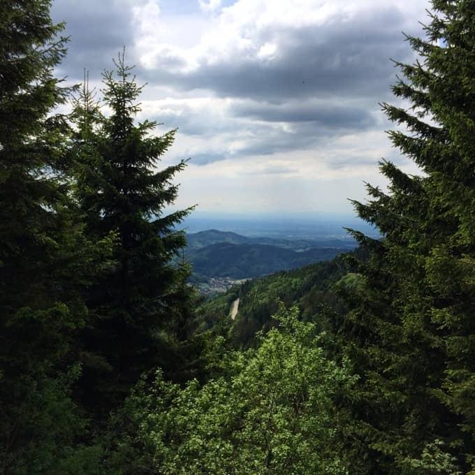 Oldtimer-Schwarzwald-Instagram15