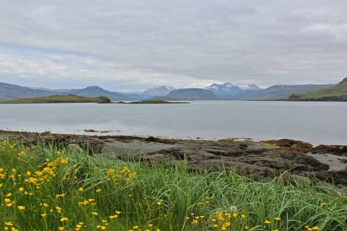 Island-Hvalfjoerdur-nach-Borganes14