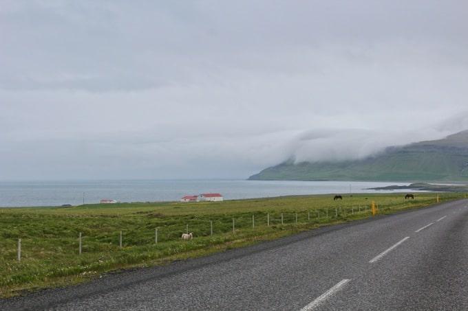 Island-Snaefellsness30