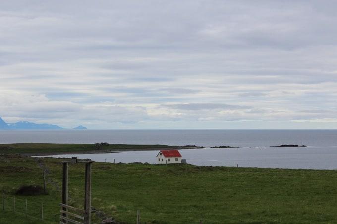 Island-Vatnsnes16