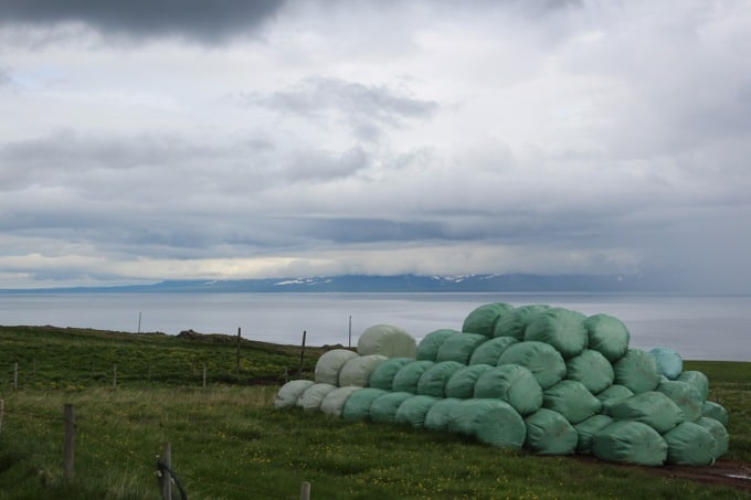 Island-Vatnsnes18
