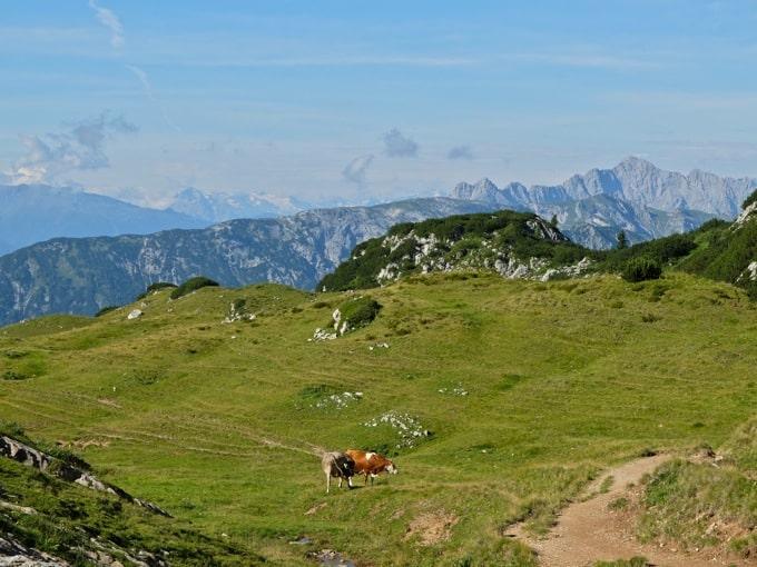 5-Gipfel-Klettersteig-Rofan06