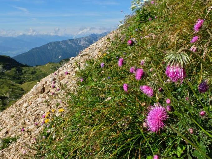5-Gipfel-Klettersteig-Rofan10