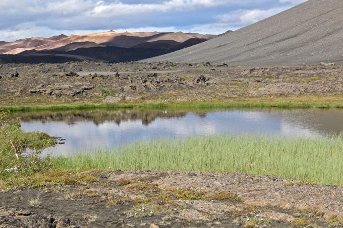 Island-rund-um-den-Myvatn31