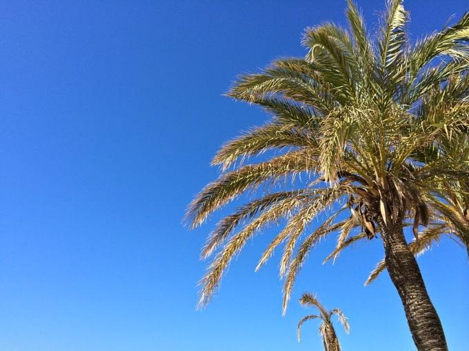 Mallorca01