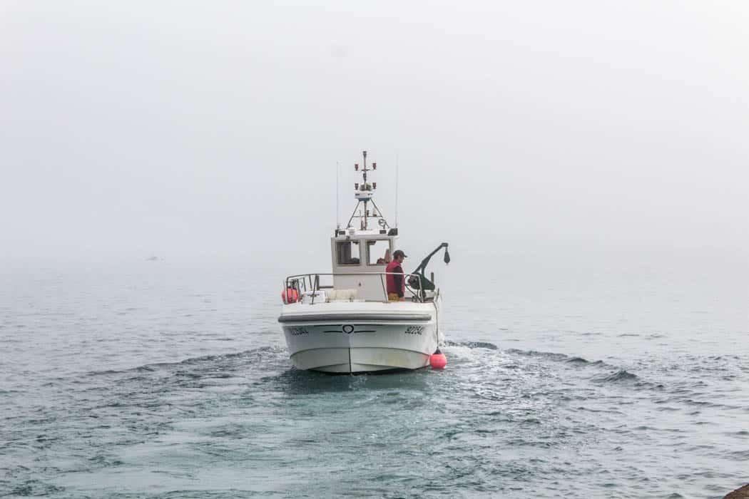 Bretagne Rundreise Tag #3 - An der rosa Granitküste und zu den Sept Îles