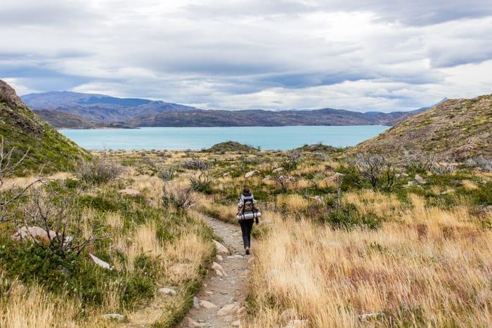 Torres del Paine W-Trek: Alle Infos, Tipps & Erfahrungen - Vom Refugio Grey zum Camp Italiano