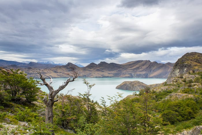 Torres del Paine W-Trek: Alle Infos, Tipps & Erfahrungen - Weg von Los Cuernos zum Refugio Chileno:  Der Lago Nordenskjöld