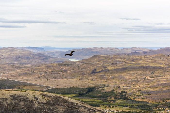 Torres del Paine W-Trek: Alle Infos, Tipps & Erfahrungen - Blick auf dem Weg von Los Cuernos zum Refugio Chileno