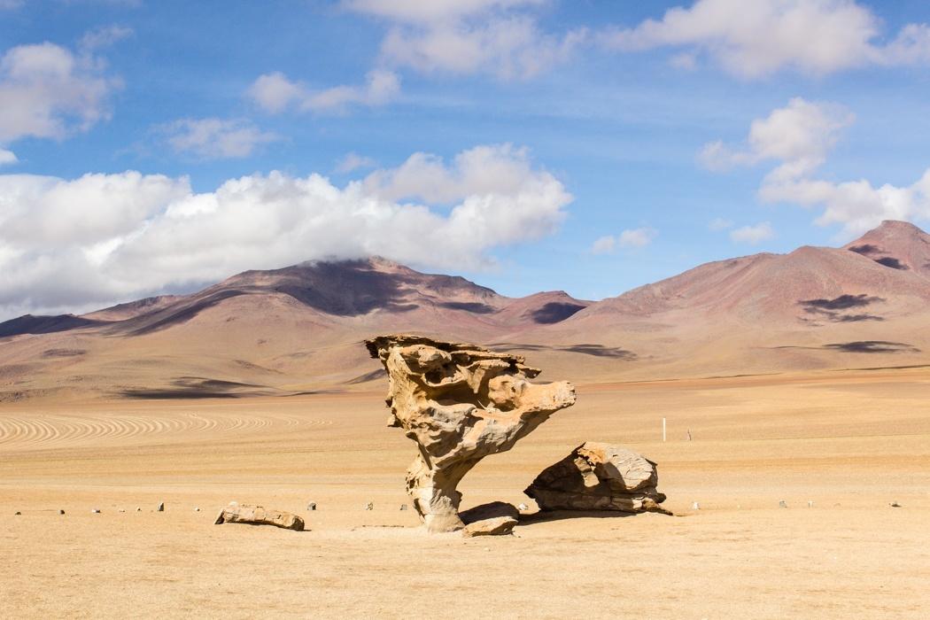Salar de Uyuni Tour: Jeep Tour über die Lagunenroute in Bolivien - Arbol de Piedra