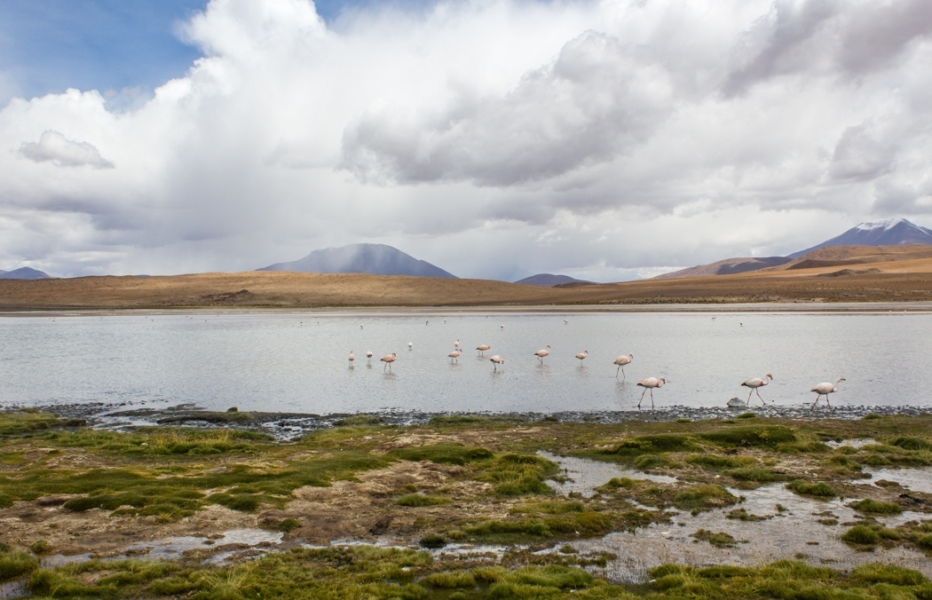 Anden-Uyuni-Bolivien-20