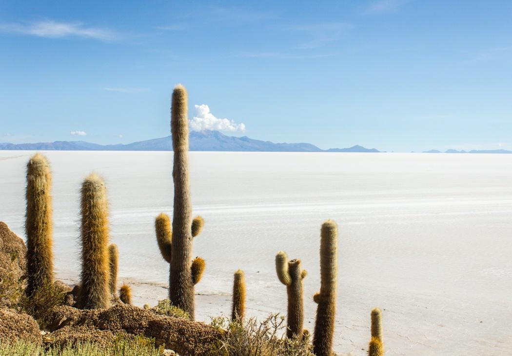 Anden-Uyuni-Bolivien-24