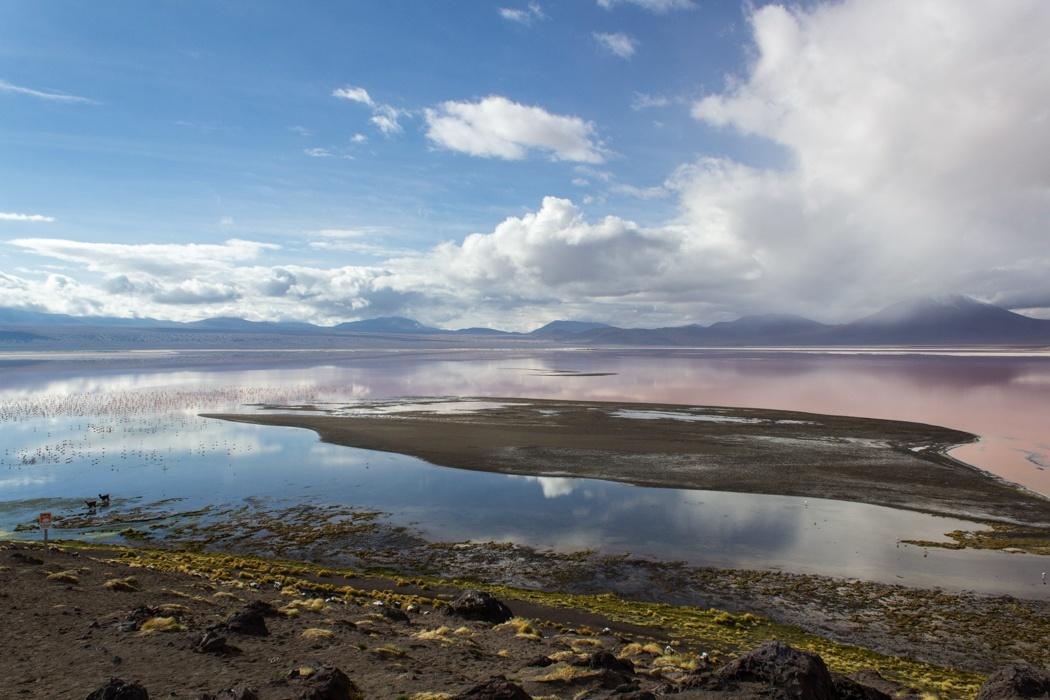 Salar de Uyuni Tour: Jeep Tour über die Lagunenroute in Bolivien - Laguna Colorada