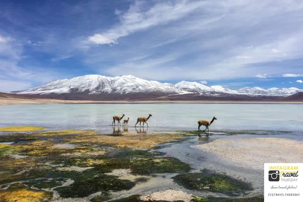 Bolivien - Reisetipps via Instagram