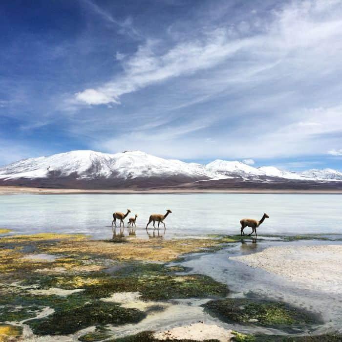 Bolivien-Instagram01