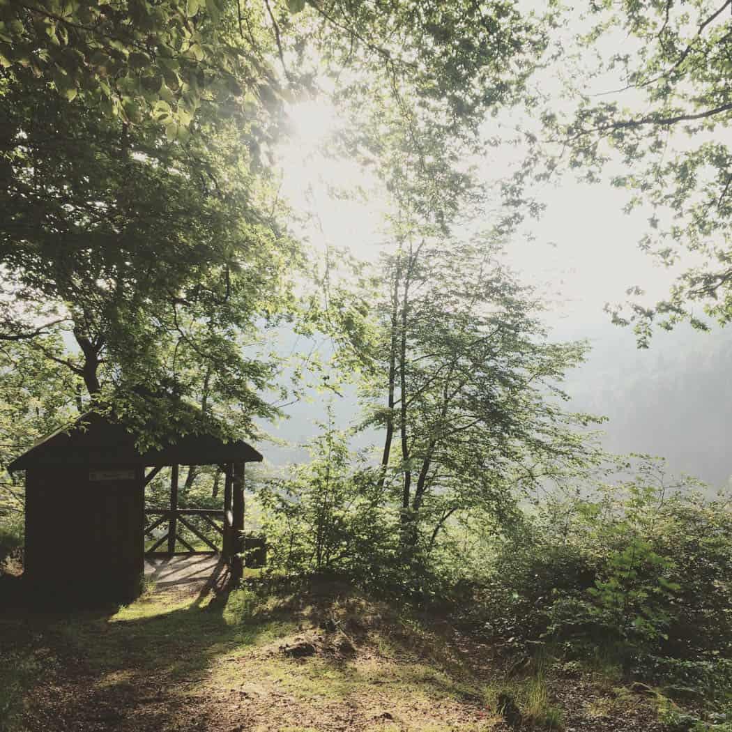 Rhein-Westerwald-Instagram