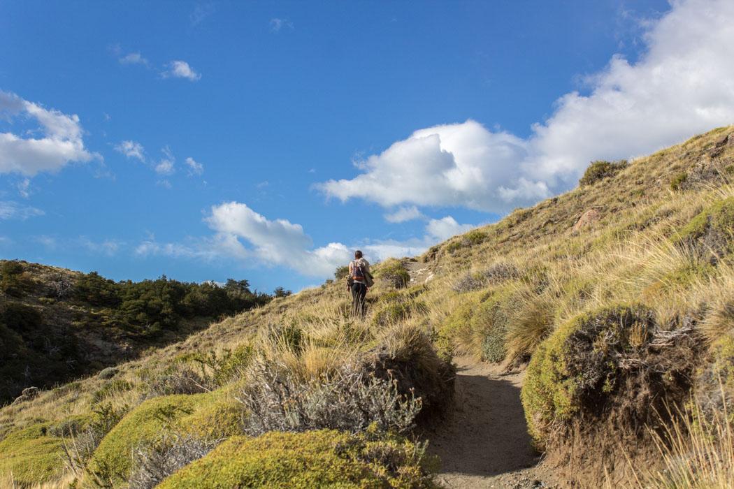 El Chaltén - Wanderung zum Loma del Pliegue Tumbado - der erste Aufstieg
