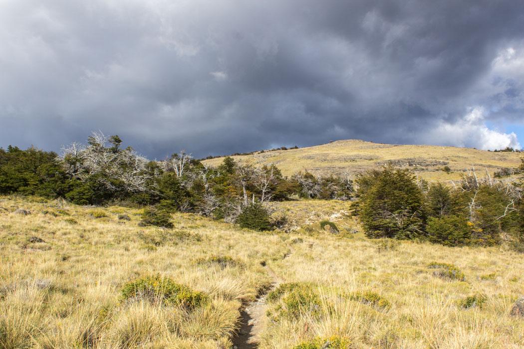 El Chaltén - Wanderung zum Loma del Pliegue Tumbado - durch steppenartige Landschaft