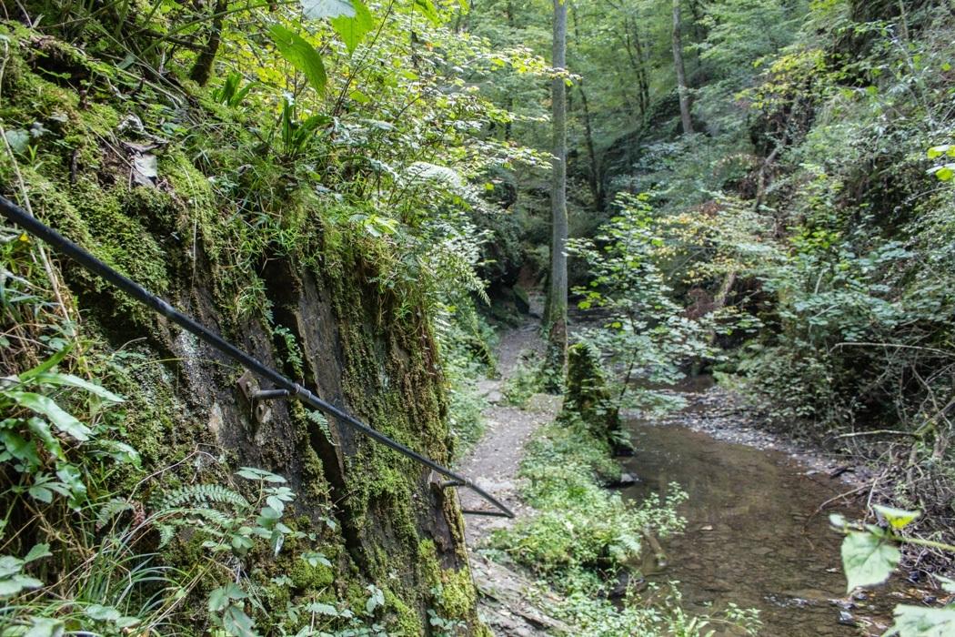 Wanderung-Ehrbachklamm-Hunsrueck-10