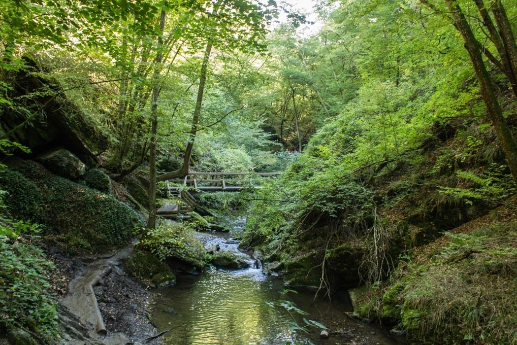 Wanderung-Ehrbachklamm-Hunsrueck-17