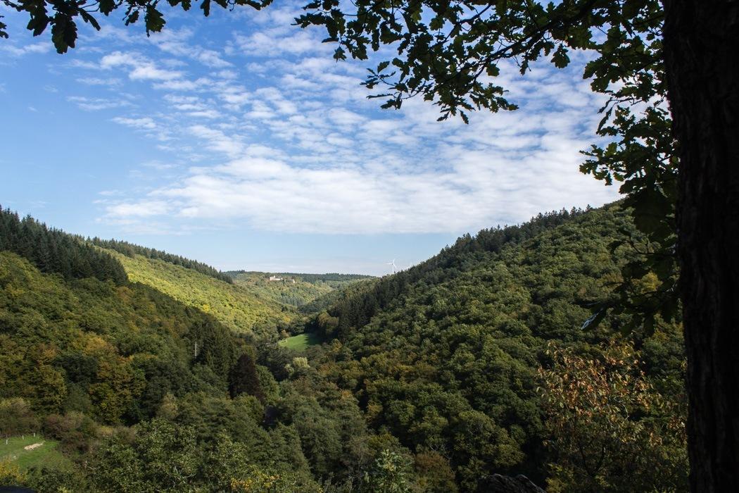 Wanderung-Ehrbachklamm-Hunsrueck-19